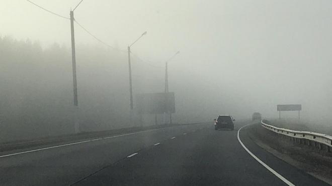 "Трассу ""Скандинавия"" накрыл густой туман"
