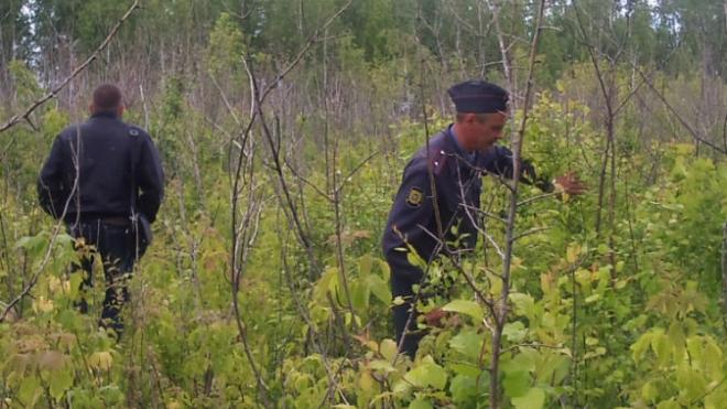 В Омске 14-летний подросток затащил в лес и задушил 6-летнюю девочку