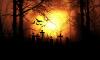 Петербуржца ограбили на кладбище