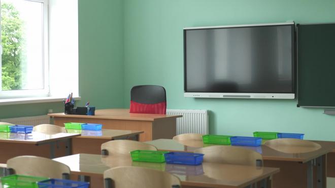 Школы в Петербурге начали прием заявлений на смешанную форму обучения