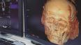 Эрмитажную мумию просканировали на томографе, чтоб ...