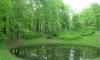 Застройщиков в Петербурге обяжут создавать зеленые зоны
