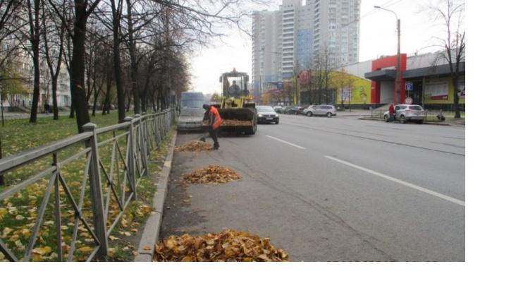 Более 500 тонн мусора вывезли с улиц Северной столицы за неделю