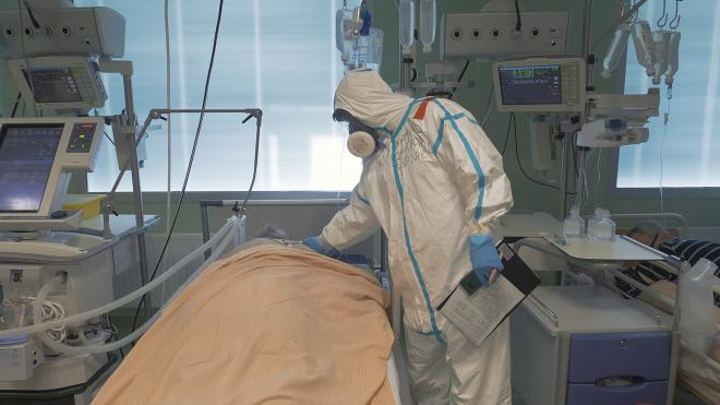 Число коек для пациентов с коронавирусом в Петербурге сократилось до 7,7 тысячи