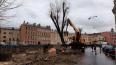 Снос деревьев на канале Грибоедова остановили после ...
