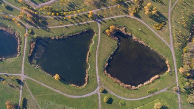 Генподрядчик экологических работ на Буферном нижнем пруду задолжал 116 млн рублей