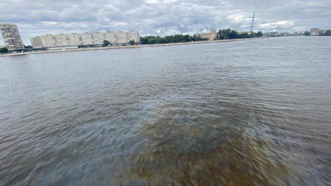 """Росприроднадзор заметил нефтяное пятно в Неве у """"Куракиной дачи"""""""