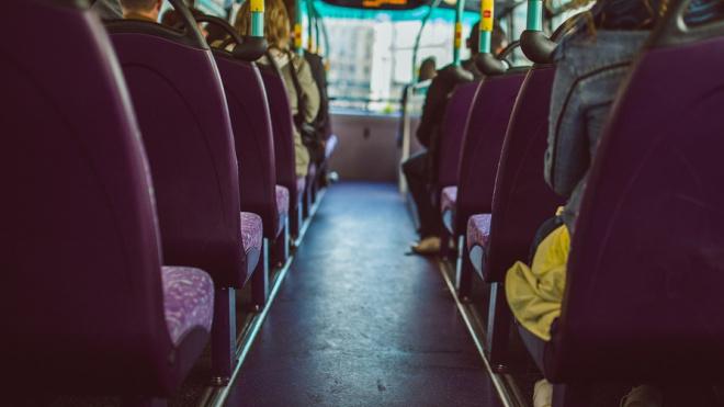 Между Петербургом и Лаппеенрантой появятся рейсовые автобусы