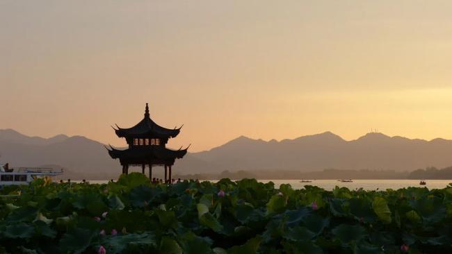 В Китае выявили новый источник вирусов