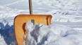 В Северной столице за ночь выпало 15 сантиметров снега