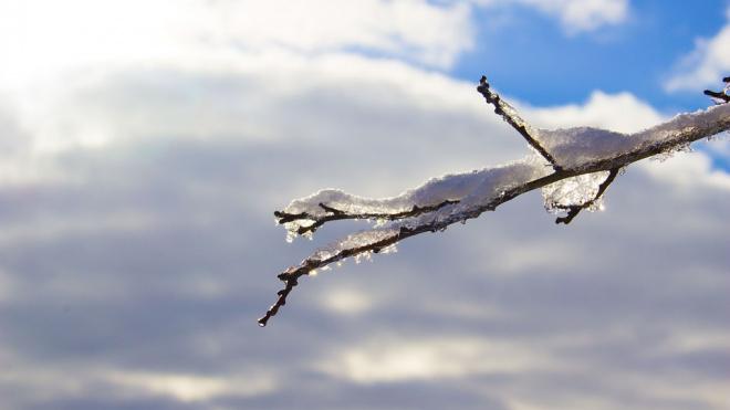 Петербуржцев предупредили о мокром снеге в понедельник