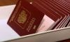 В 2015 году мигранты принесут в бюджет Петербурга более 1 млрд рублей