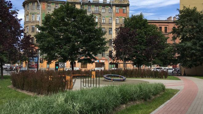 В Петербурге уменьшится число гайд-парков