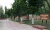 В Приморском районе появились сразу три аллеи памяти