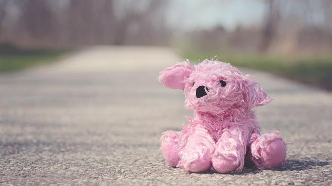 В Тверской области со среды ищут 10-летнюю девочку
