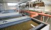 Программы модернизации систем водоснабжения и водоотведения охватят все районы Ленобласти
