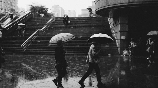 В понедельник в Петербурге ожидается дождь