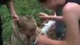 Подростки снимали на видео садистские «забавы»