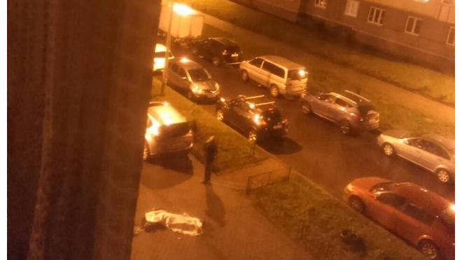 В Осиновой Роще с 17 этажа упала школьница