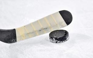 Сын хоккеиста Игоря Ларионова заключил пробный контракт со СКА