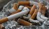 В Петербурге пресекли ввоз контрафактных сигарет из Московской области