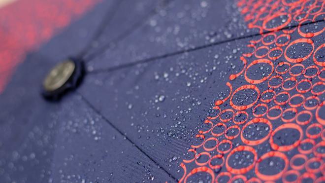 В воскресенье по Ленобласти пройдут дожди