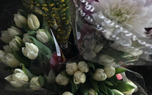 Неизвестный в маске ограбил цветочный магазин на проспекте Ветеранов