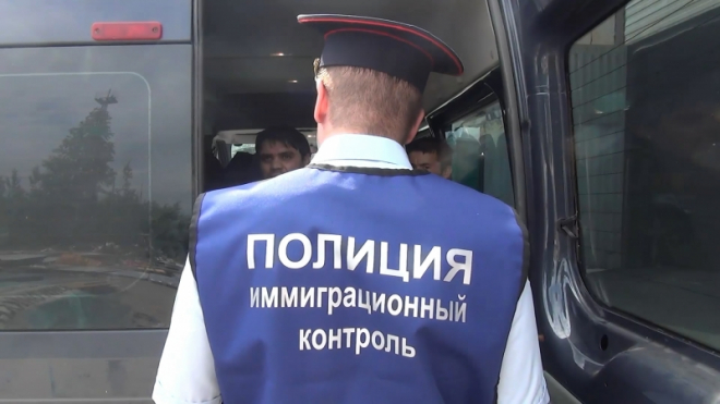В Петербурге поймали маршрутчиков без прав