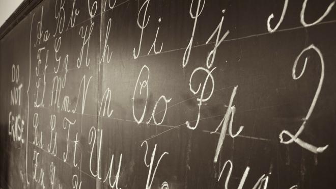 Родители петербургских школьников выберут схему обучения
