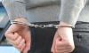Экс-депутата Дениса Волчека заподозрили в крупном мошенничестве
