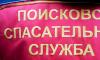 Пропавшая в декабре петербурженка вернулась домой