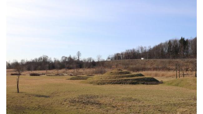 Парк «Дальняя Рогатка» в Шушарах станет общественным