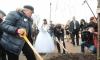 Губернатор Петербурга посадил дерево