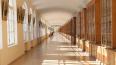 Выпускница СПБГУ плюнула в комиссию по этике