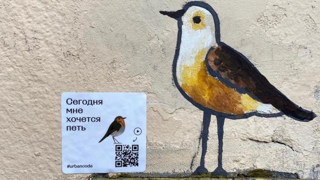 """Команда Urbancode: """"Стрит-арт – это эмоциональные точки на карте, делающие город живым организмом"""""""