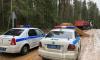 Трассу в Приозерском районе пришлось перекрыть из-за двух самосвалов