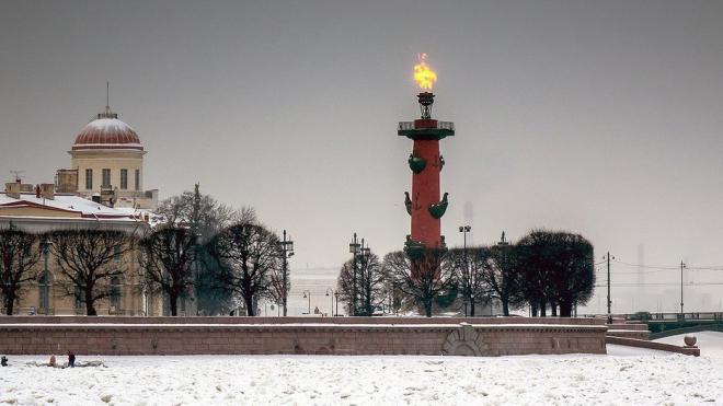 В Петербурге горят Ростральные колонны в память о снятии блокады