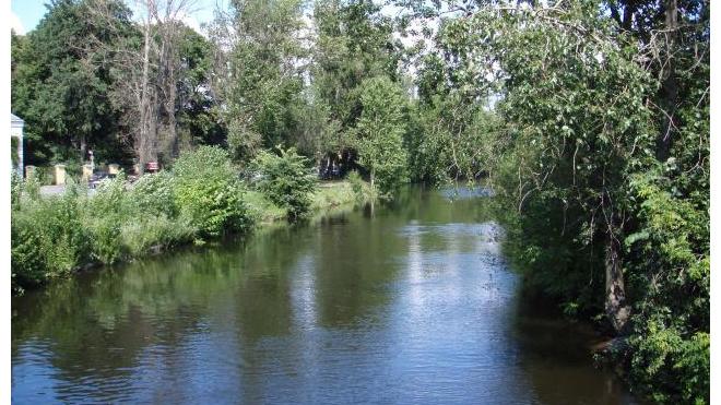 Петербургский депутат предложил создать в городе четыре места для купания