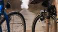 За шесть украденных велосипедов петербуржец получил ...