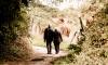 Прокуратура Петербурга обязала вернуть деньги пенсионерам за сорванное свадебное путешествие