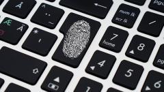 Крупная информационная утечка из Trello: данные тысяч российских компаний появились в публичном доступе