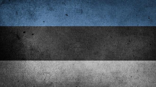 Истребители ВВС США проведут учения в Эстонии