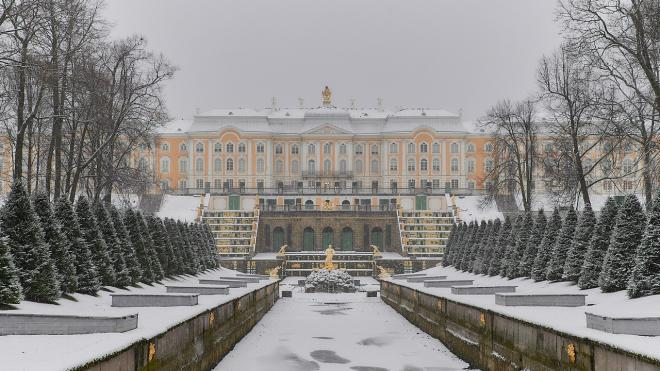 Музеи Петергофа вернулись к работе в привычном режиме