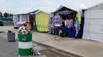 Жители Янино-1 недовольны стихийным рынком на Голландской ...