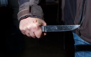 В Выборгском районе мужчина располосовал своего друга и лег спать