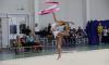 В Ленобласти открылся соревновательный сезон по художественной гимнастике