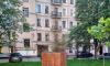 Петербуржцы не оценили засохшие ёлки от чиновников за 5 млн рублей