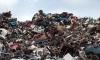На мусорном полигоне в Ленобласти найден труп со следами насильственной смерти