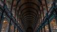 В Петербурге реконструируют библиотеку РАН и расширят ...