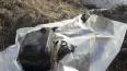 Экологи ликвидировали нефтеразлив в Пушкинском районе